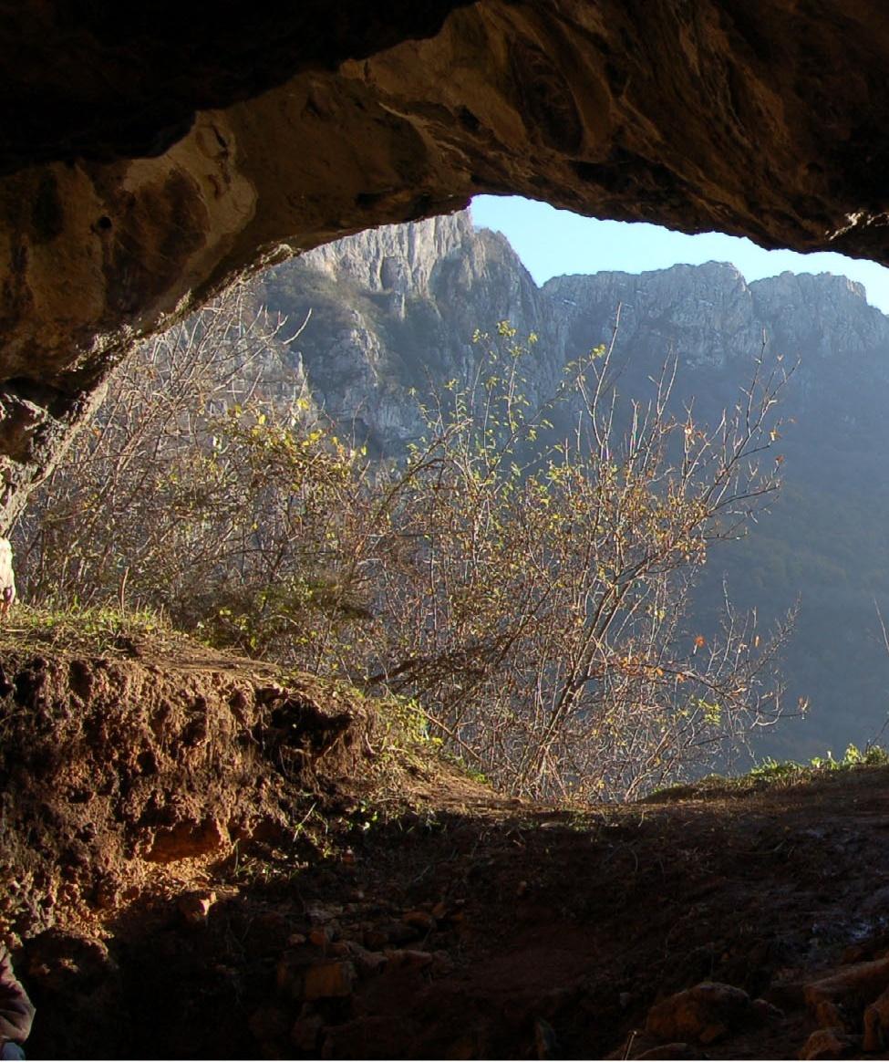 Пећина Баланица